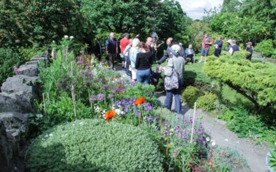 Oxton's (virtual) Gardens, Sunday May 10 and beyond